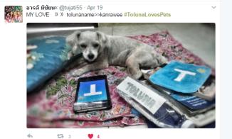 tolunalovespets2
